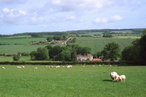 marshwood farm bnb 4 600